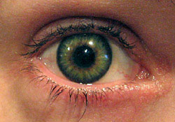 Vihreä värilinssi